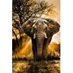 "Diamond Painting ""Afrikanischer Elefant"" 30 x 45 cm"