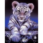 Diamond Painting - Weißer Tiger