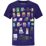 Official Minecraft Sprites Boy's T-Shirt (11-12 Years)