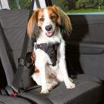 Trixie - Sicherheitsgeschirr, Sicherheitsgurt, Autogeschirr Protect Gr. S - Brustumfang 40 - 50 cm